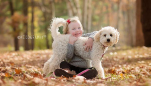 goldendoodle breeder New York