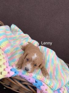 Amy reserved Lenny